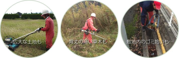広大な土地の芝刈りも、背丈の高い草木の伐採も、敷地内のゴミ拾いも